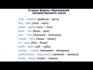 19 Множественные существительные (Plural Nouns). Упражнение №2