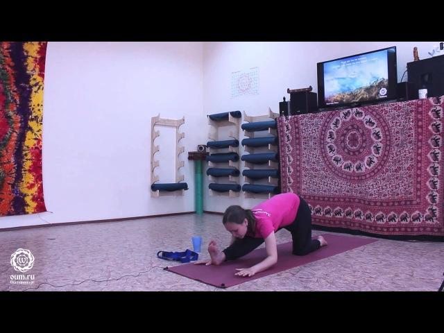 Мягкое вытяжение Практика йога для начинающих