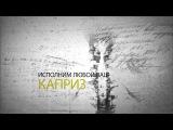 Заставка для video4pro Заказать видеоролик инфографику рекламу
