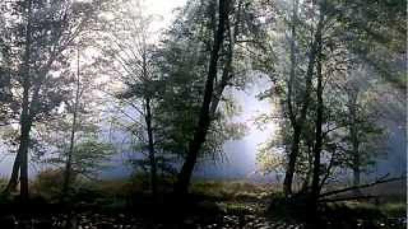 Edda Művek - Erdély felé