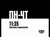 «Пингвины Мадагаскара» по будням в 11.35 на 2х2!