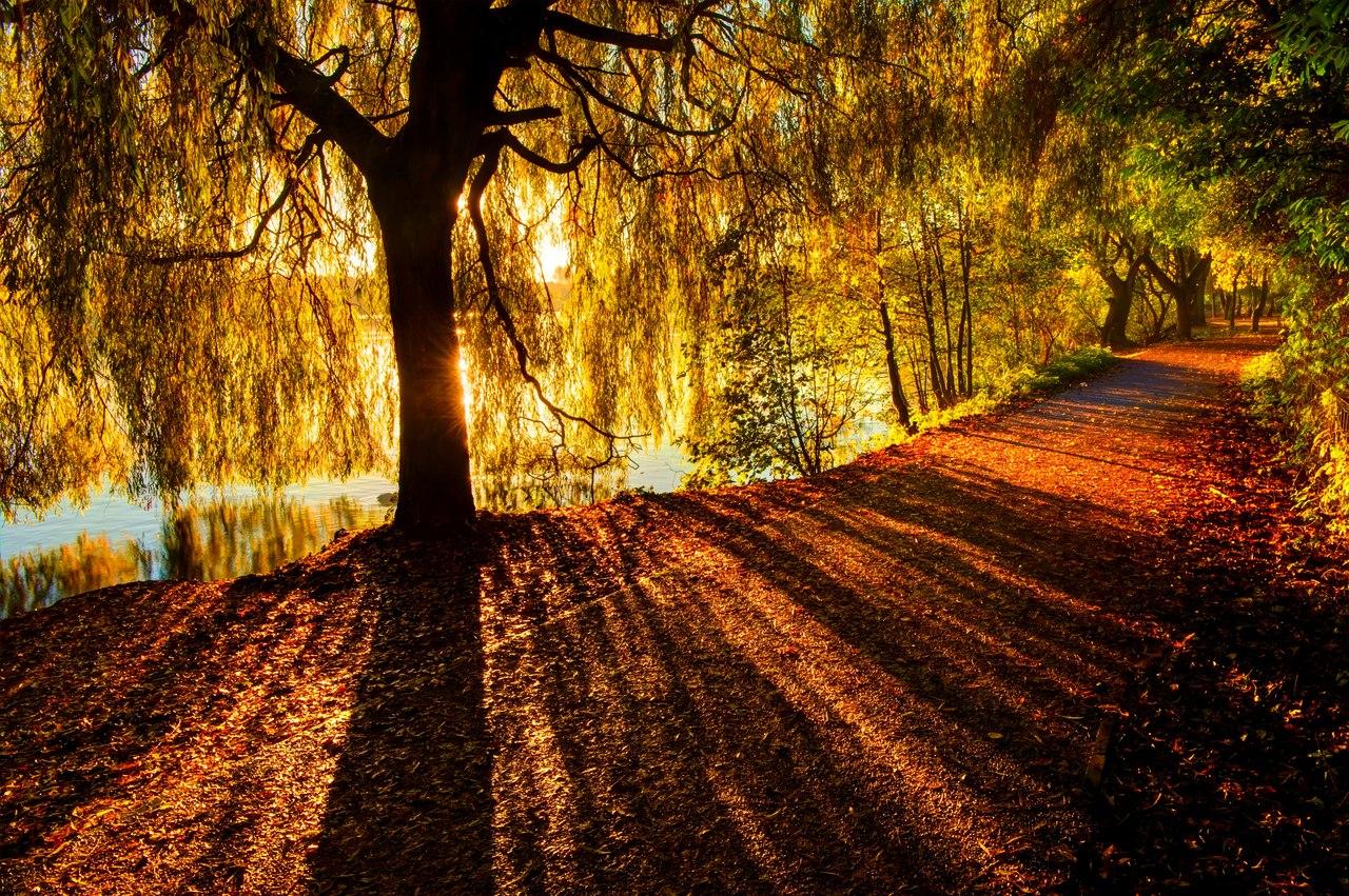 Autumn time ... - Pagina 2 -j0ZdnN2JUQ