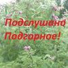 Подслушано Подгорное*