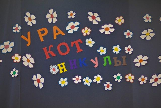 Международная Выставка Кошек AFC г.Невинномысск 16-17 апреля 2016г. Y7qnJXA3Ufg