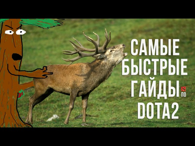 Самый быстрый гайд - Furion/Nature's prophet Dota 2