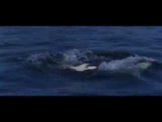 Michael Jaсkson -Free Willy Освободите Вилли