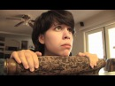 Yoshi's Cookie - Hey Ash Whatcha Playin'?
