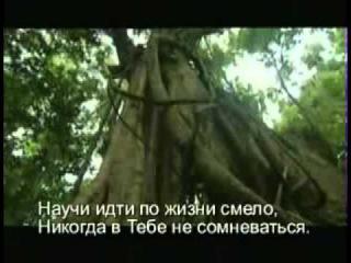 Черная стрела песня rus