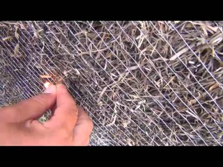 Экспериент: горят ли домики из водорослей? [Эко-курорт