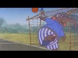 _Kak_zveri_v_futbol_igrali