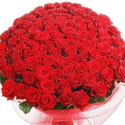 Заказ цветов в туркменистане купить цветы лилии в москве