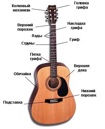 Строение акустический гитары.
