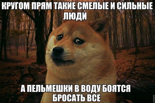 https://pp.vk.me/c624723/v624723884/2a702/Qq9BHJXQifg.jpg