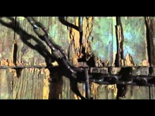 Posesion infernal 1982 pelicula completa español DE ESPAÑA .Wuilof.