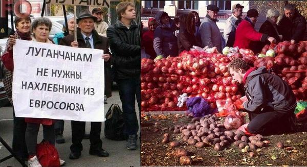 Террористы за сутки 17 раз обстреляли города на Луганщине, - Москаль - Цензор.НЕТ 431
