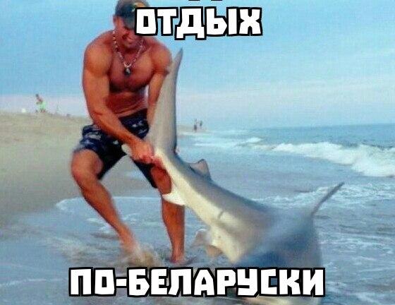 http://cs624724.vk.me/v624724694/4d9f8/s911jFPc4VQ.jpg