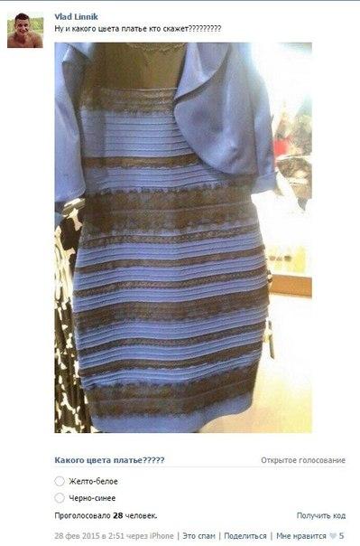 платье шредингера фото