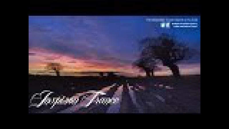 Bluefire Dreamnasia Photographer Remix HD