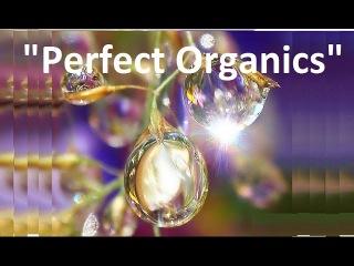 Вебинар   ПРЕЗЕНТАЦИЯ Perfect Organic  Дмитрий Высотков 14 10 2015