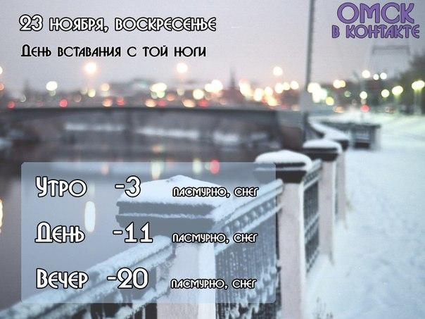 новости омска и омской области происшествия видео