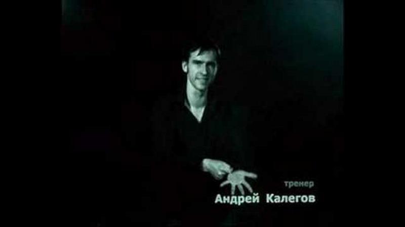 Алексей Знаменский (сурдоперевод) - Перемен (В. Цой)