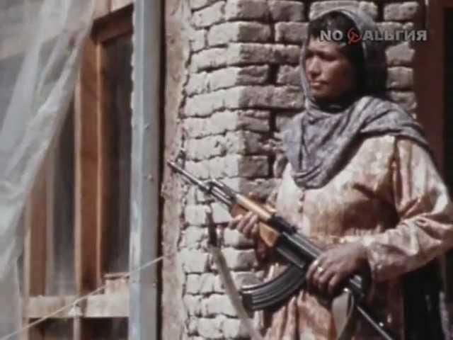 Афганский дневник (Александр Каверзнев)