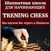 Шахматы для начинающих | Школа Trening Chess