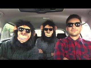 Поездка на автомобиле через эпоху музыки