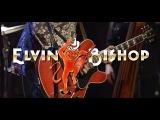Elvin Bishop -