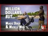 Magic Dogs and Muscle Men - Million Dollars, But... in 4K