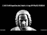 BACH: Well-Tempered Clavier Book II, Prelude No. 1 (Reza Touserkani)