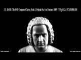 BACH: Well-Tempered Clavier Book II, Prelude No. 6 (Reza Touserkani)