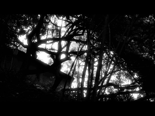 Viennale-Trailer 2011: The 3 Rs (by David Lynch)