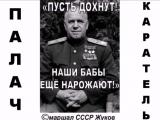 ЖУКОВ - РЕДКОСТНАЯ МРАЗЬ. (Сергей Мосин)