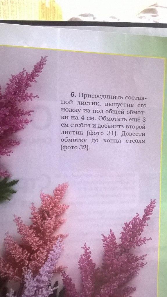 Лесные и полевые цветы I9_nuIAF4UY