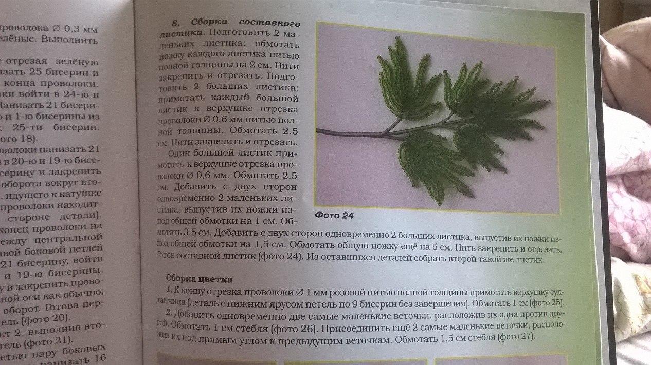 Лесные и полевые цветы W-vK8l37gNQ