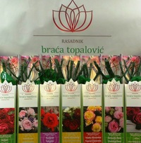 Розы сербия братья топалович каталог