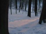 Гинтаре Яутакайте - Ziema Зима (лит.)