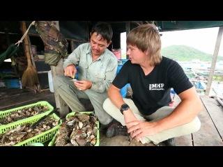 Вьетнам - 3 выпуск (1080p HD) | Мир Наизнанку