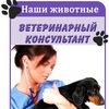 Наши животные|Ветеринарный консультант
