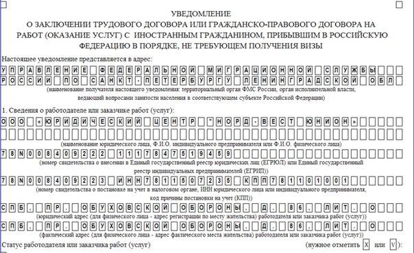 бланк трудовой договор с иностранным гражданином по патенту образец 2016 - фото 5