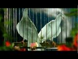 Юрий Шатунов - Майский вечер Official Video 2008
