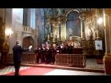 Венгрия,Будапешт,органный концерт с хором