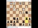Шахматный блиц - Разгром в ферзевом гамбите