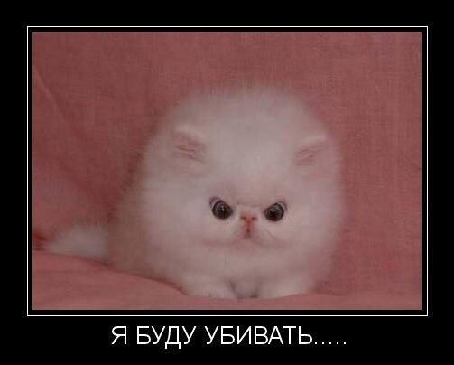 http://cs624731.vk.me/v624731027/11009/t_cEyHktoNY.jpg