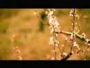 «Люди, ликуйте» — песня к Пасхе, написанная на стихи святого Николая Сербского