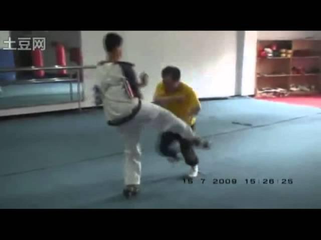 通备武艺 Tongbei Martial Arts - Baji Quan Applications by Master Li Tianhua