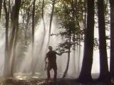 Страчені Світанки. Фільми про ОУН та УПА