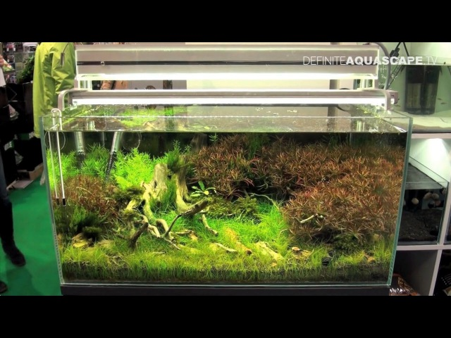 Planted aquariums of Heimtiermesse 2015, Hannover - part 5