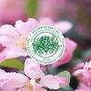 Ботанический сад • Тверь